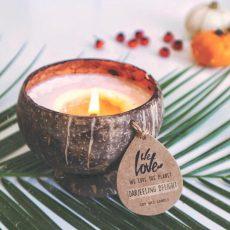 Natuurlijke Kokosnoot Geur Kaars